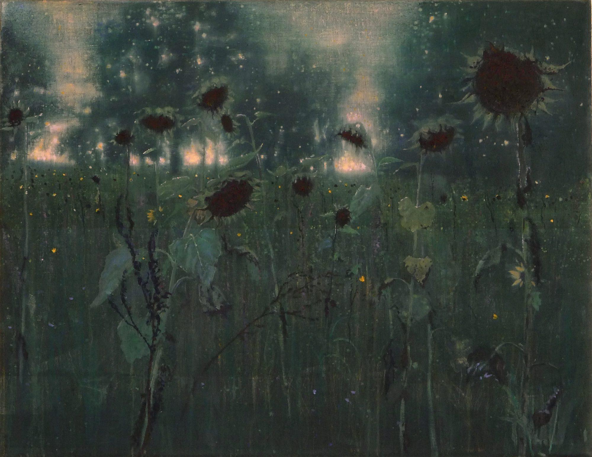 zonnebloemen isabella werkhoven